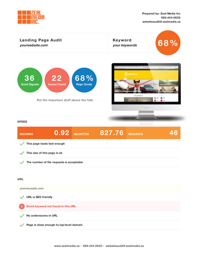SEO audit report online
